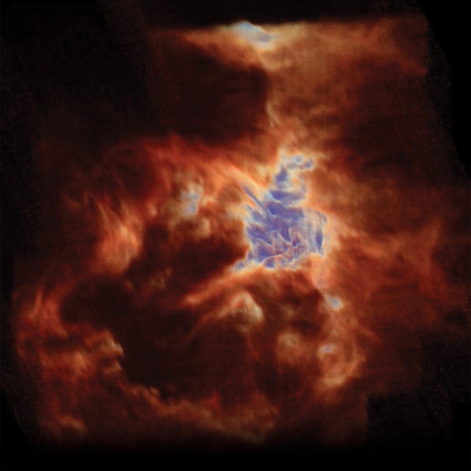 Orion's Dragon