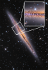 Optical image of the galaxy NGC 891 showing dark extinction features extending out from the midplane