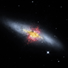 Image of Cigar Galaxy with its magnetic field shown as streamlines over red outflow, yellow dust, and black and white stars