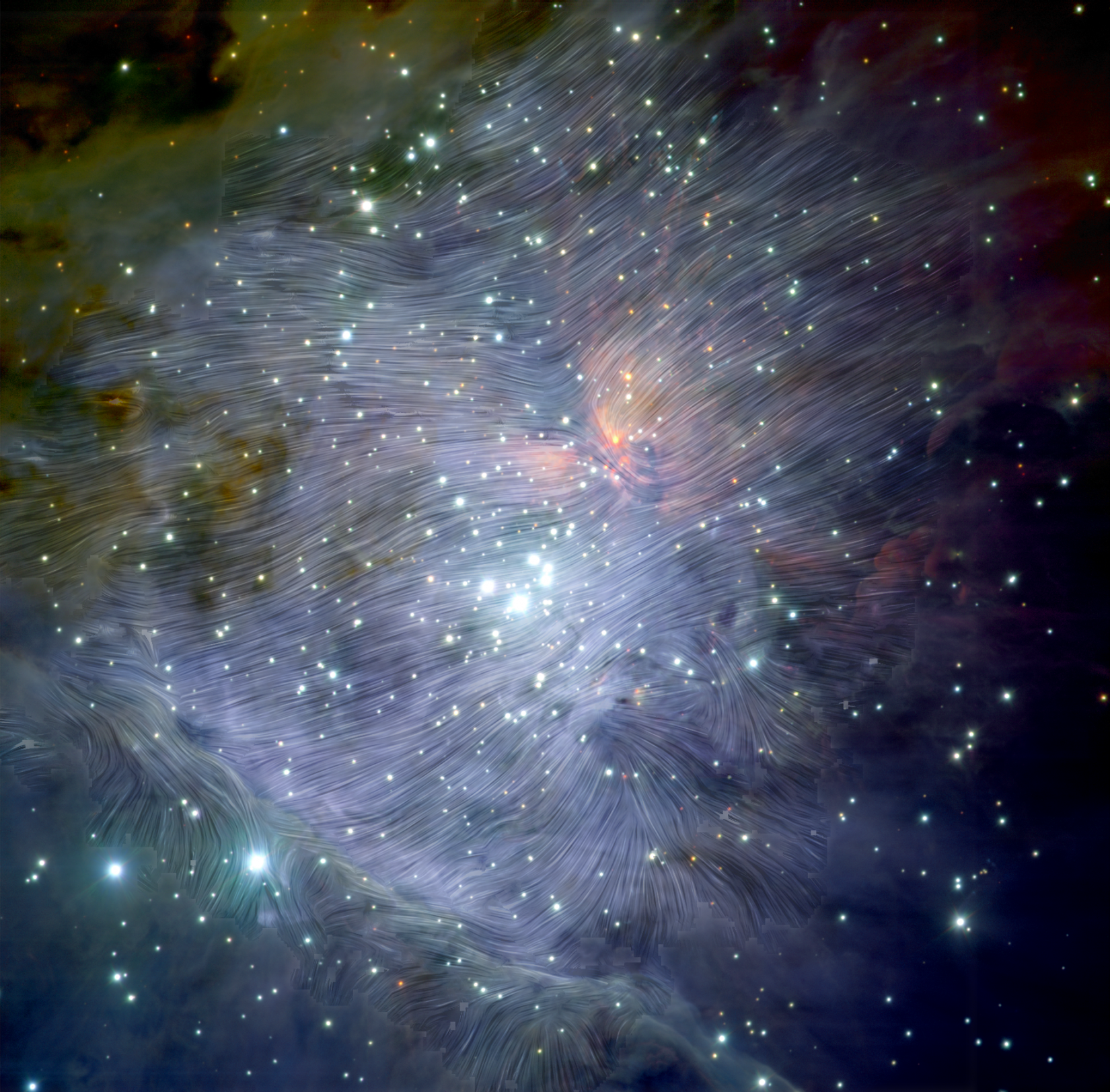 Magnetic fields in the Orion Nebula
