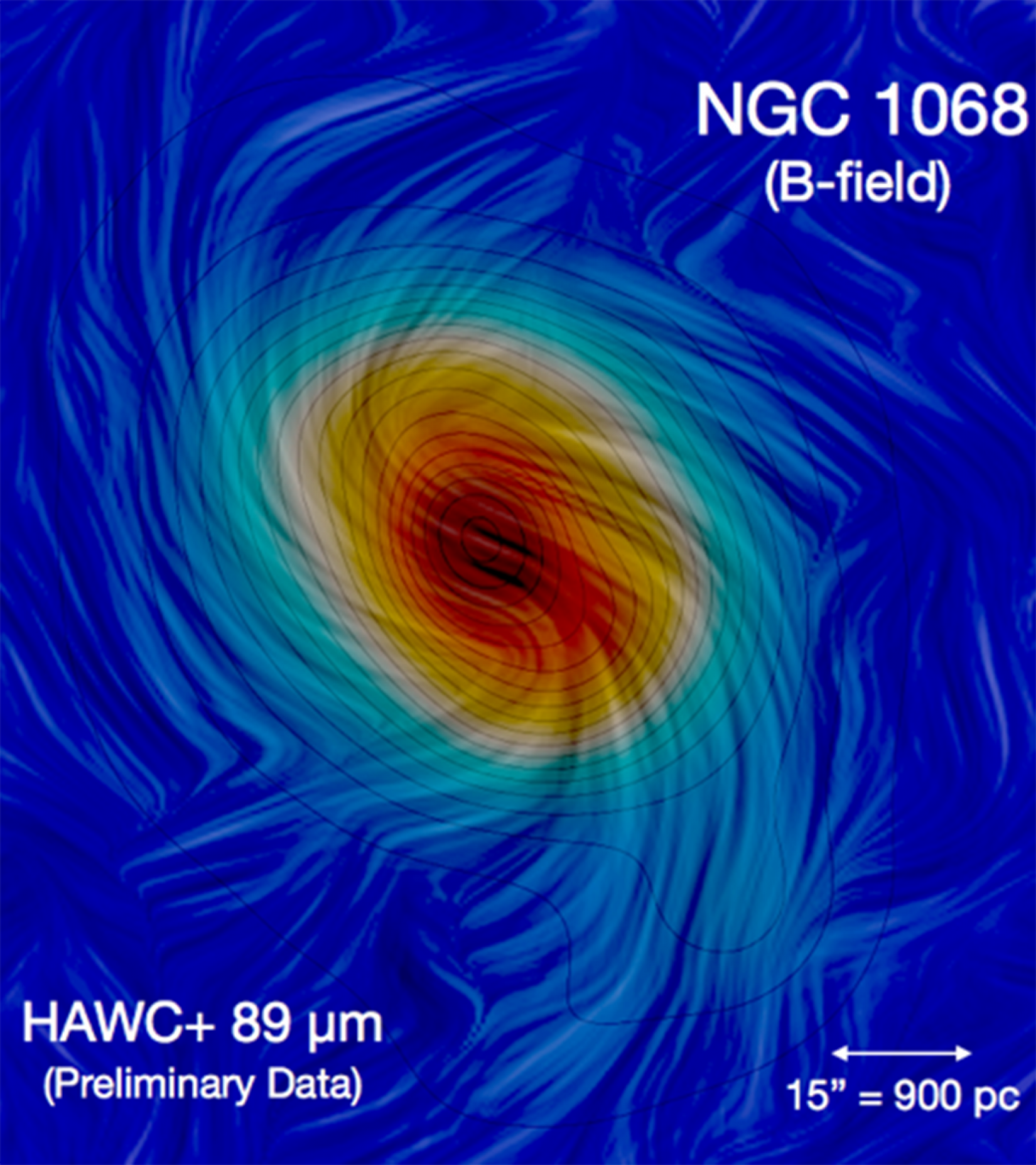 Image showing magnetized spiral arms of NGC 1068