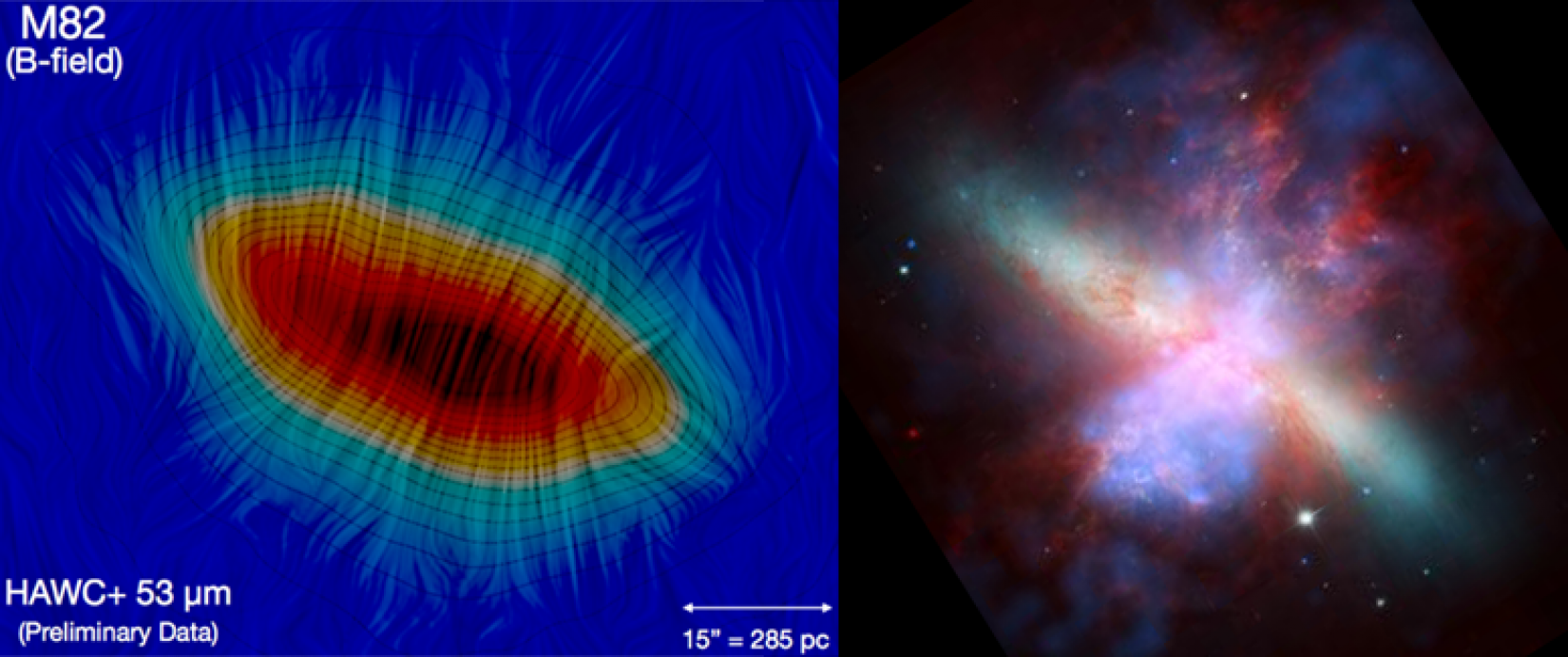 A view of the large-scale magnetic in the starburst galaxy M82 and multi-wavelength view of the galaxy.